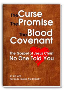 The Gospel of Jesus Christ No One Ever Told You